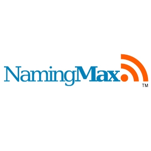 naming max domain name tips and info